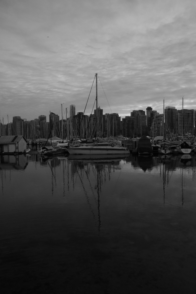 The inky dark water of Vancouver harbour reflects some of the array of boats it provides a home for.