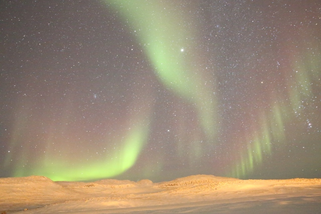 The northern lights dance above the frozen landscape of Victoria Island. Canadian Northwest Territories.